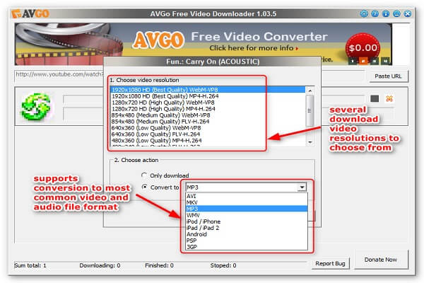 AVGO Free Video Downloader for pc